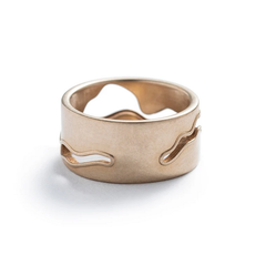 Willamette Ring Bronze