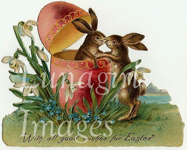Easter Bunnies Images Download Pack - Lunagirl