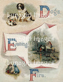 Victorian Alphabet Books: 100s of Images, 24 Complete Books