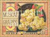 Vintage Can & Crate Labels -- CD or Download - Lunagirl