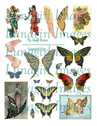 Fly Away Home Wings Digital Collage Sheet - Lunagirl