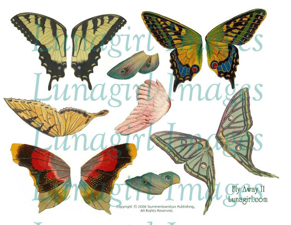 Fly Away II Larger Wings Digital Collage Sheet - Lunagirl