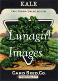 Antique Seed Packet Lithographs: 80 Images - Lunagirl