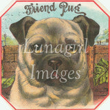 digital vintage image animal victorian label pug dog art