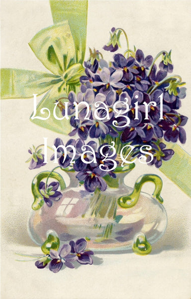 64 Violets Lilacs Pansies Purple Blue Flowers Download Pack - Lunagirl