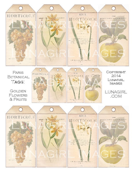 Paris Botanical Tags: Yellow Flowers & Fruit Digital Collage Sheet - Lunagirl