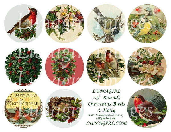 "Christmas Birds & Holly 2.5"" Rounds Digital Collage Sheet - Lunagirl"