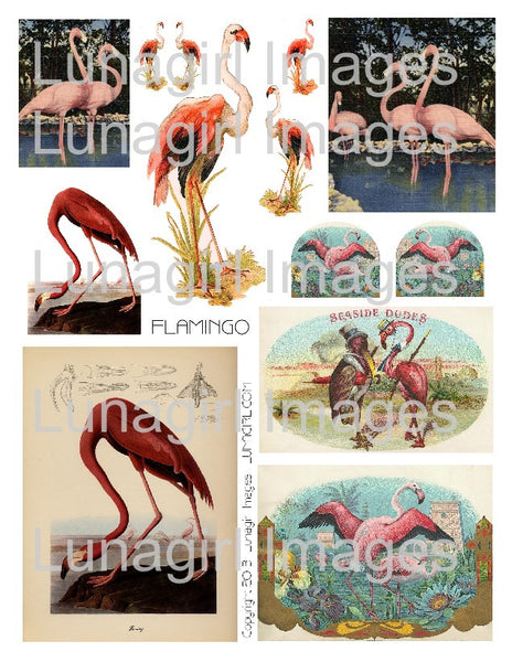 Pink Flamingo Digital Collage Sheet - Lunagirl