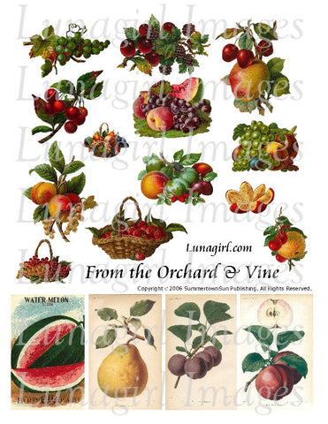 From the Orchard & Vine Digital Collage Sheet - Lunagirl