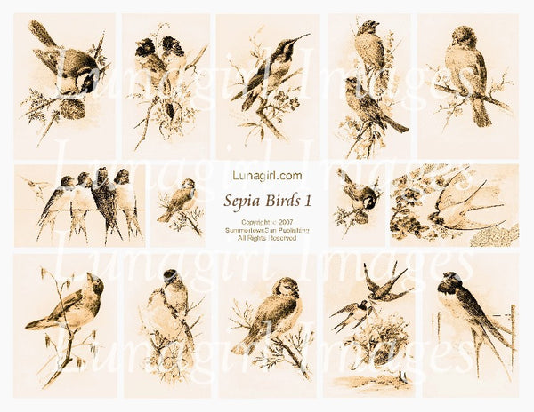 Sepia Birds #1 Digital Collage Sheet - Lunagirl