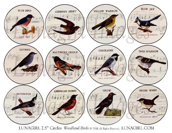 "Woodland Birds with Music Backgrounds 2.5"" Circles Digital Collage Sheet"