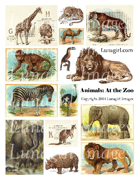 Animals: At the Zoo Digital Collage Sheet - Lunagirl