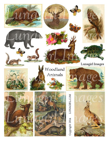 Woodland Animals Digital Collage Sheet - Lunagirl