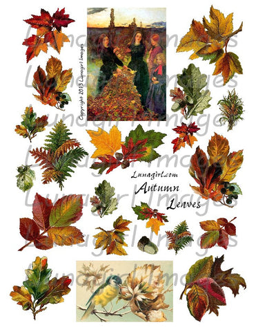 Autumn Leaves Digital Collage Sheet - Lunagirl