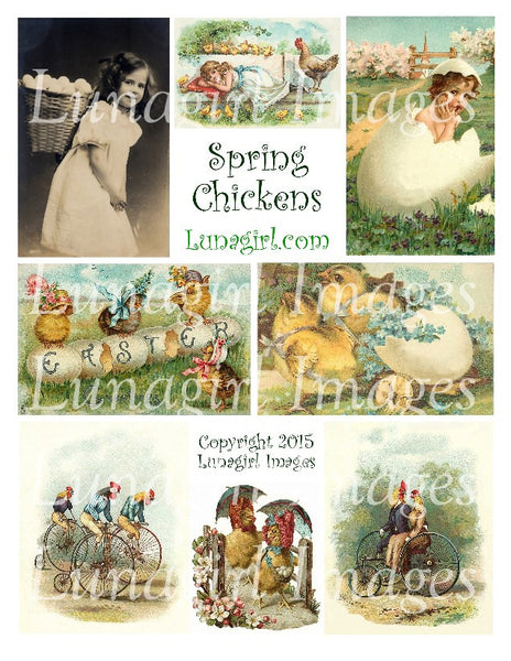 Spring Chickens Digital Collage Sheet - Lunagirl