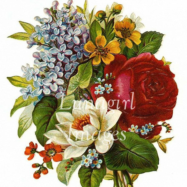 Victorian Flowers: 900 Images