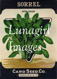 Antique Seed Packet Lithographs: 80 Images
