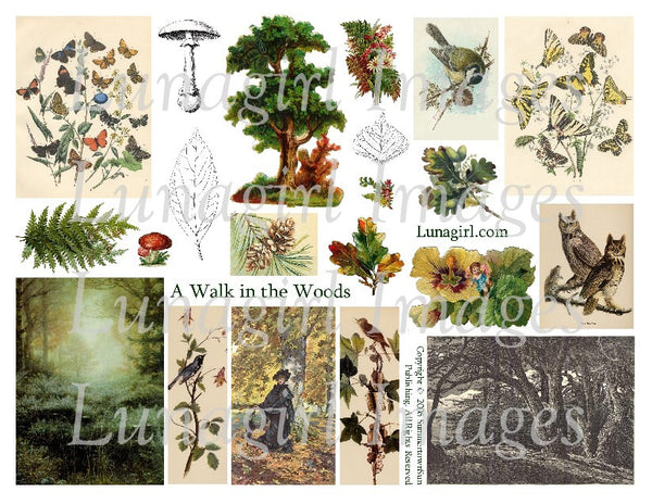 A Walk in the Woods Digital Collage Sheet - Lunagirl
