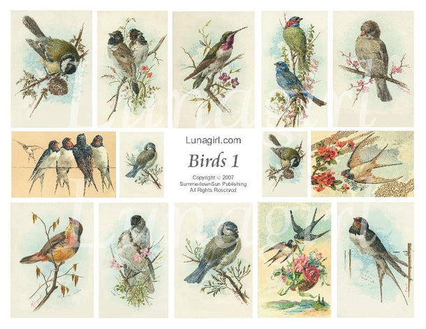 Digital Collage Sheets: Birds & Animals