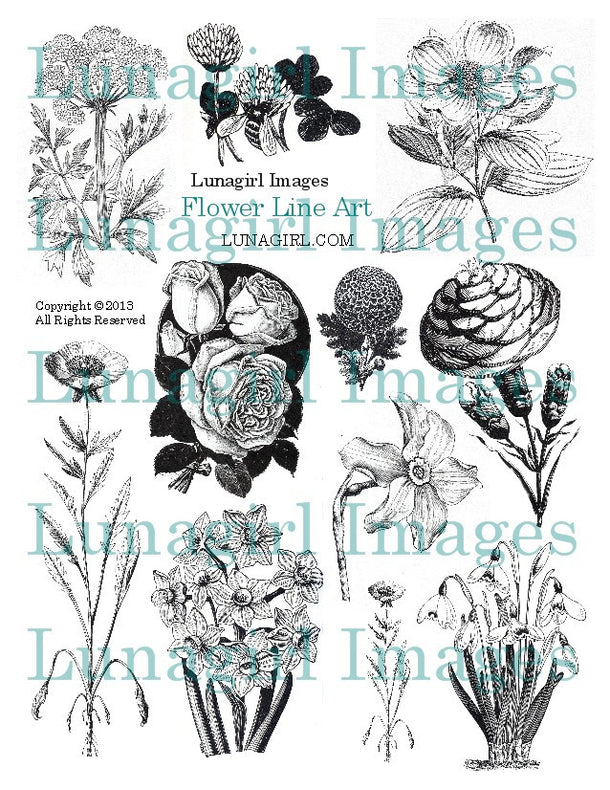 Digital Collage Sheets: Flowers Nature Garden