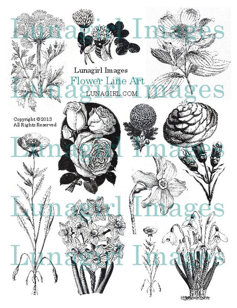 Flowers Line Art Digital Collage Sheet - Lunagirl