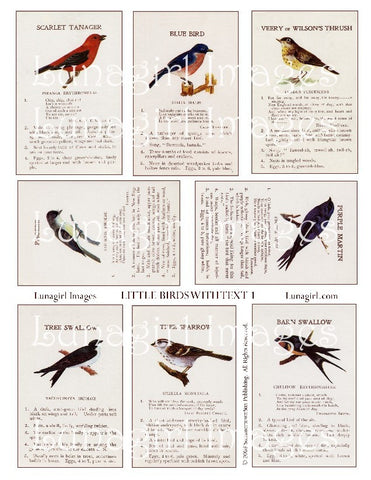 Little Birds with Text #1 Digital Collage Sheet - Lunagirl
