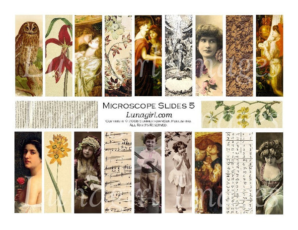 "Microscope Slides #5 : 1x3"" Pendants Digital Collage Sheet - Lunagirl"