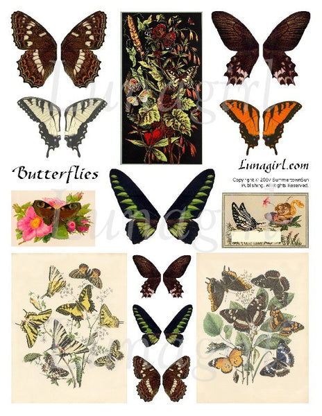 Natural Butterflies Digital Collage Sheet - Lunagirl
