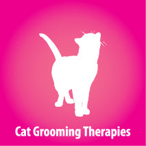 Cat Kitten Feline Grooming Therapies