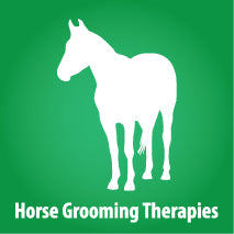 Horse Equine Grooming Therapies
