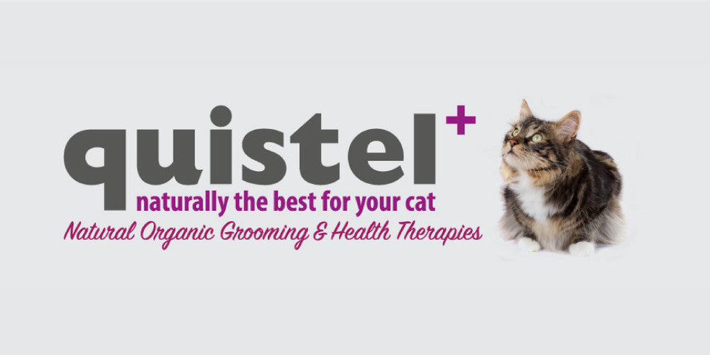 quistel organic cat and kitten pet grooming