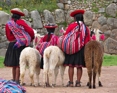 Alpaca Wool in Peru