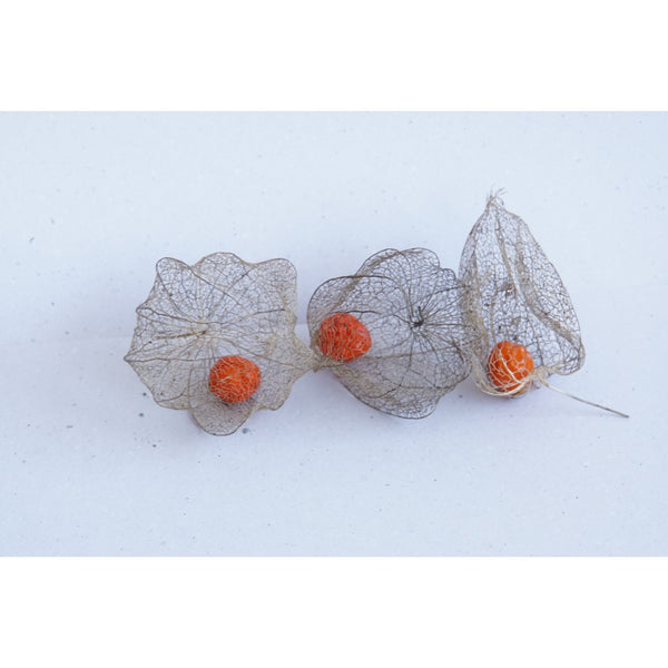 'Physalis Alkekengi' Sterling Silver Ring