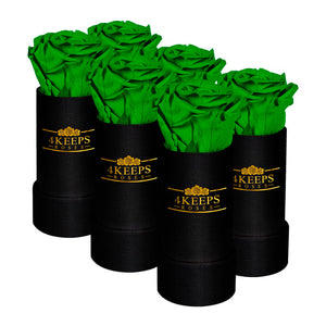 6 NATURE GREEN ROSES