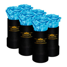 Load image into Gallery viewer, 6 SKY BLUE ROSES