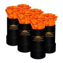 Load image into Gallery viewer, 6 SUNSET ORANGE ROSES