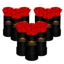 Load image into Gallery viewer, 9 RED ROSES
