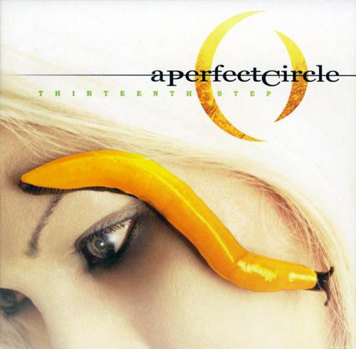 A PERFECT CIRCLE - THIRTEENTH STEP (IMPORT)