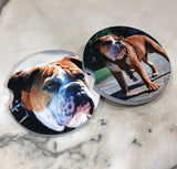 Bulldogs Sand Stone Car Coasters