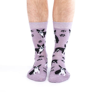 Men's King Size Boston Terrier Socks