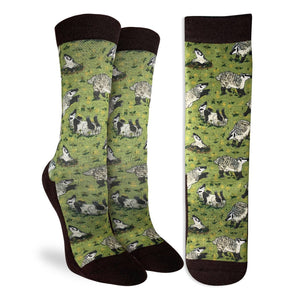 Women's American Badgers Socks