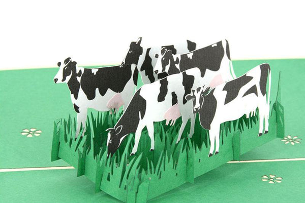 White Cow - Henry Pop-Up Cards