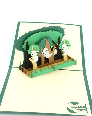 3 Koalas 3D - Henry Pop-Up Cards