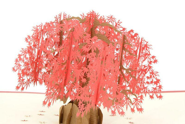 Japenese Red Maple Tree - Henry Pop-Up Cards