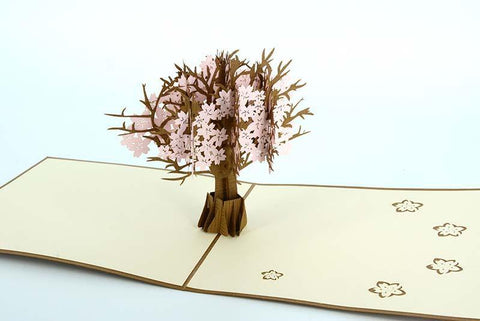 Pink Cherry Blossom 3D