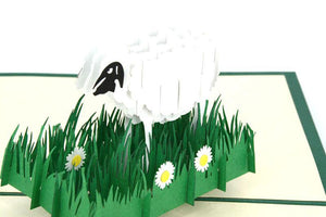 Sheep - Henry Pop-Up Cards