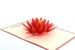 Water Lily - Henry Pop-Up Cards