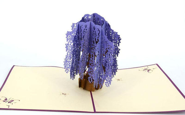 Wisteria - Henry Pop-Up Cards