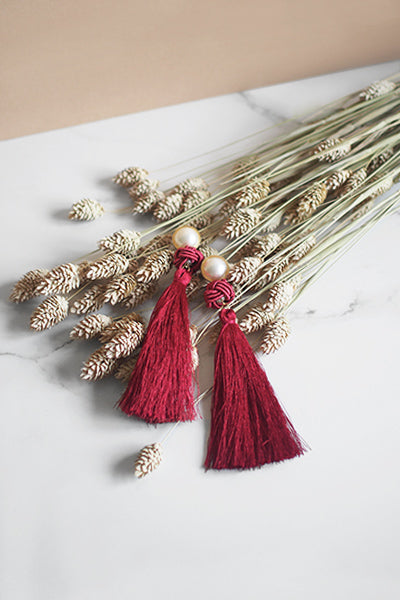 Lael Tassel Earrings in Red [30% OFF]