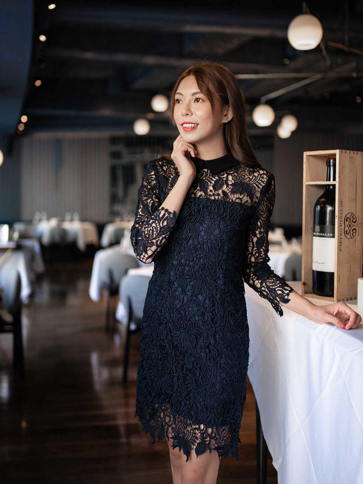 Laura black collar lace dress